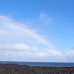 【ハワイ在住者発】ノースショア観光スポット Waimea Valley